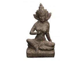 Shiva Assis - Détouré