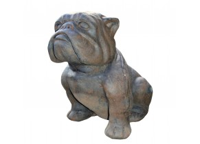 Bulldog assis