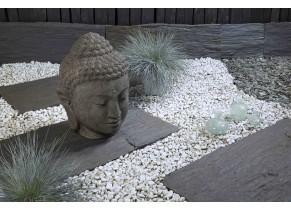 Tête de Bouddha - jardin