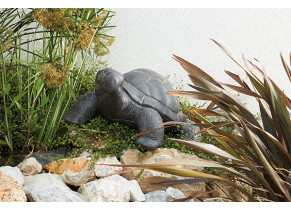 Tortue Large - jardin