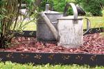 Bordure Galva - Feuille Olivier - jardin anthracite